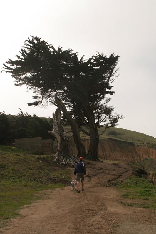 Hobie hiking at Mori Point